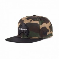 http://media.streetmarket.cz/static/stockitem/data16432/thumbs/wu-tang-basic-snapback-black-25536.thumb_600x600.jpg